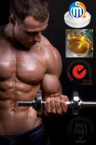 Anabolic Testosterone Sustanon 250 for Muscle Building
