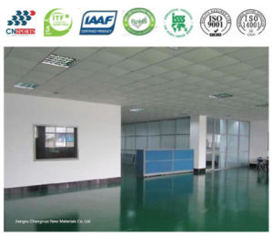 Beatiful and Durable Polyurea Flooring Coating for Office Areas pictures & photos