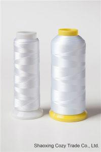 120d/2 Rayon Viscose Embroidery Thread 5000y 5000m 4000m 4000y 3000m 3000y 2000m 2000y 1000m 1000y/Spool for Multi Head Embroidery Machine pictures & photos