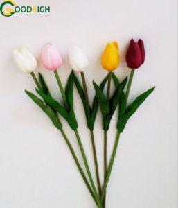 Real Touch Tulip PU Artificial Flower pictures & photos