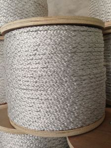 Electric Fencing Braided Rope pictures & photos