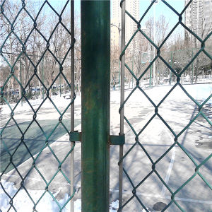 PVC Coated Chain Link Fence for Animal pictures & photos