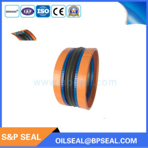 Das Type 5 PCS Kit Hydraulic Compact Seal pictures & photos