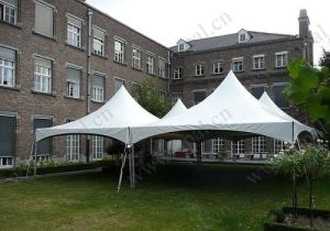 5mx5m Graceful Pagoda Tent for Big Event pictures & photos
