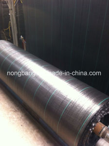 China Silt Fence with UV pictures & photos