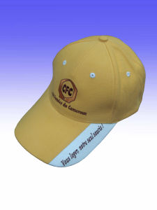 Custom Embroidered Logo Cheap Price OEM 100% Cotton Cap pictures & photos