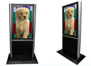 42inch Floor Standing Digital LCD Signage Player (SY-F042)