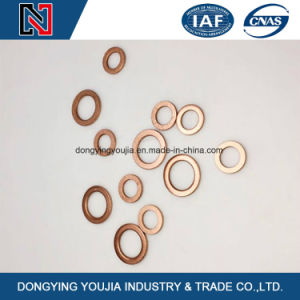 Stainless Steel Flat Washer for Fastener Bolts and Nuts pictures & photos