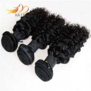 100% Peruvian Virgin Human Hair Jerry Curl Hair Weaves pictures & photos