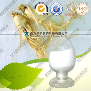 Manufacture Ginsenoside Ginseng Root Extract Powder pictures & photos