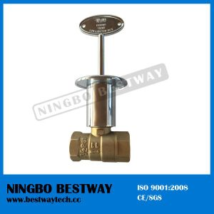 Gas Fryer Valve with Nickel Plated Key Manufacturer (BW-B79) pictures & photos