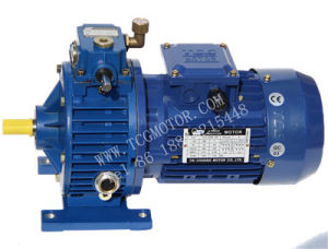TCL Series Stepless Speed Variator with Motor