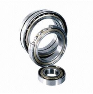Self-Aligning Ball Bearing with Chrysanthemum-Shaped Stamping Steel Cage