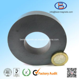 D40xd20X10 Y30bh High Quality Ring Shape Anisotropic Ferrite Magnets pictures & photos
