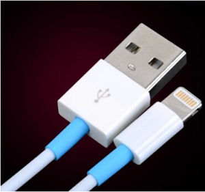 Date Cable Mobile Travel Charger/Home Charger