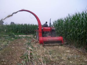 Green Crops Silage Harvester for Sale
