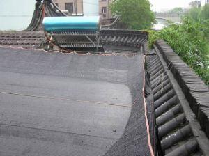 Black HDPE Shading Net, Shade Sail pictures & photos