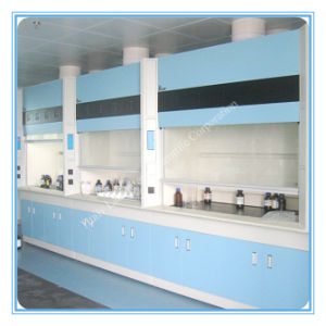 Factory Lab Exhaust Fume Hood for Pharmaceutical (HL-TFG043) pictures & photos