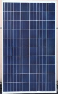Solar Panels with TUV/CE/IEC/Chubb PV Module