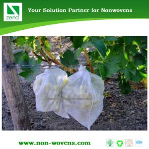 Polipropilene Non-Woven Fabric Fruit Banana Bunch Cover pictures & photos