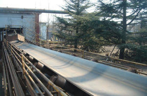 St2500 Steel Cord Conveyor Belt pictures & photos