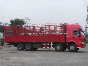 China Brand Sinotruk Cargo Truck with 6X4 Driving Type for 30tons pictures & photos