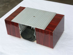 Durable Pedestrian Street Aluminum Floor Expansion Joint pictures & photos