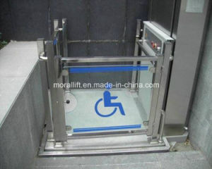 Glass Stainless steel Wheelchair Lift pictures & photos