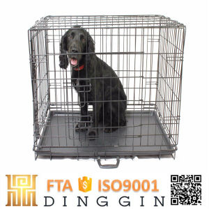 Prefabricated Wire Dog Cage pictures & photos
