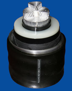 220kv Power Cable with Al/XLPE/CAS/PE-1*630mm2