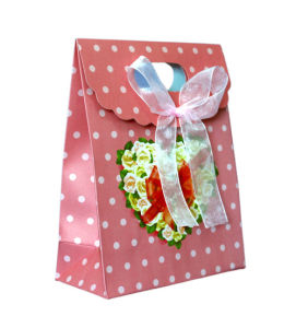Paper Packaging Gift Bag with Ribbon