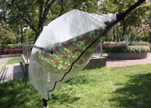 Guardian Bug Net Hammock Mosquito Net Camping pictures & photos