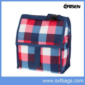BSCI Audit Factory Cooler Bag pictures & photos