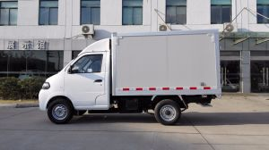 EEC Approved Box Electric Truck pictures & photos