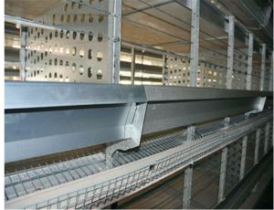 Automatic Chicken Poultry Cage Farm Equipment for Breeder (H type frame) Poul Tech pictures & photos
