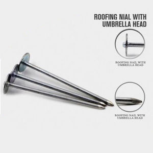 Professional Roofing Umbrella Nail with Nice Price pictures & photos