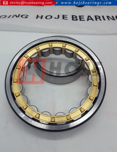 Full Complement Cylindrical Roller Bearing Nup205 Nup2205 Nup305 Nup2305