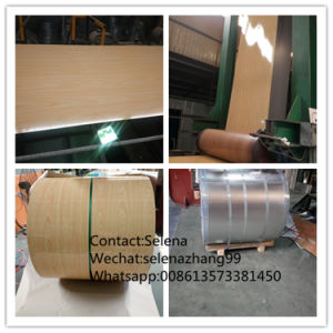 Color Coated Steel Coils PPGI/Marble Pattern Steel for Construction pictures & photos