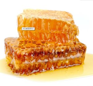 Bee Honey 100% Natural/Bee Honey
