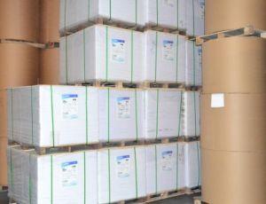 Offset Paper /Wood Free Paper 90GSM, 100GSM/Bond Paper