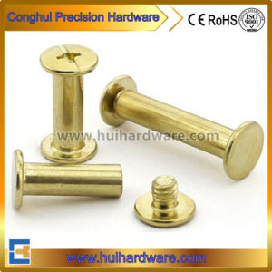 China Slotted Binding Screw, Chicago Screw, Female and Male Screw pictures & photos