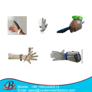 China Chain Mail Gloves Amazon of Ce and ISO9001 Standard pictures & photos