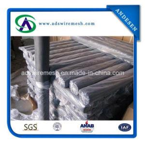 16X16mesh 100G/M2 Fiberglass Window Screen pictures & photos