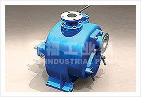 Wzw Series Self Priming Sewage Pump pictures & photos