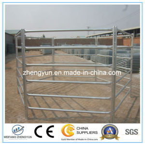Hot Dipped Galvanized Horse Fence Panel Professional Manufacturer pictures & photos