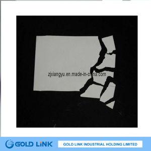 Destructible Labels/Anti-Counterfeit Stikcer (G001)