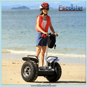 New Products Two-Wheeled Electric Chariot pictures & photos