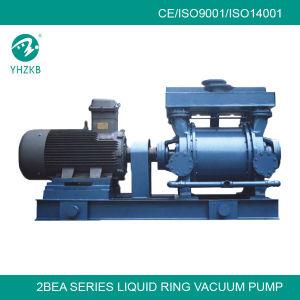 Big Capacity Liquid Ring Type Vacuum Pump Vacuum System pictures & photos