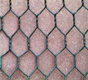 Best Quality Hexagonal Wire Mesh pictures & photos