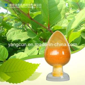 Chrysophanol with The Purity 98% CAS: 481-74-3 pictures & photos